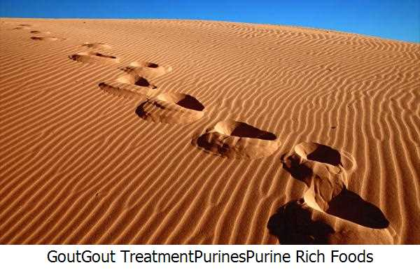 Gout,Gout Treatment,Purines,Purine Rich Foods