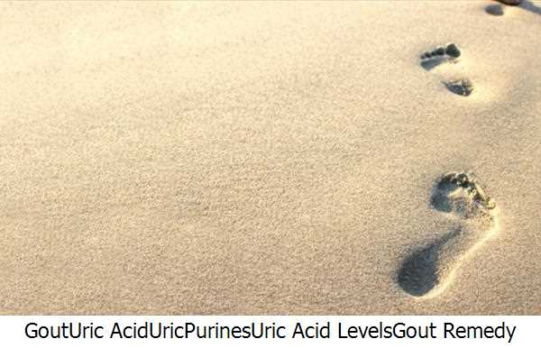 Gout,Uric Acid,Uric,Purines,Uric Acid Levels,Gout Remedy Report,Purine Rich Foods,Gout Remedy,Uric Acid Level,Gout Attacks