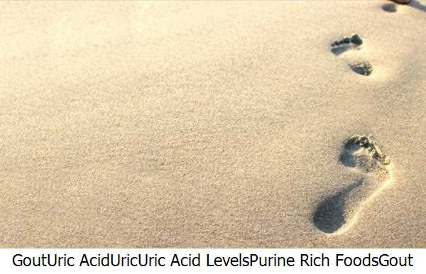 Gout,Uric Acid,Uric,Uric Acid Levels,Purine Rich Foods,Gout Remedy