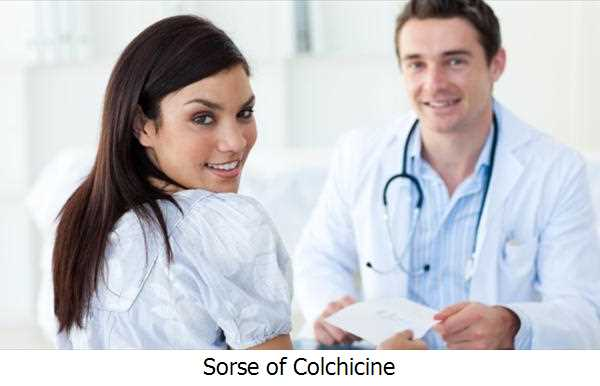 Sorse of Colchicine