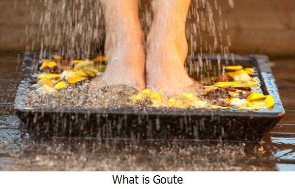 What is Goute